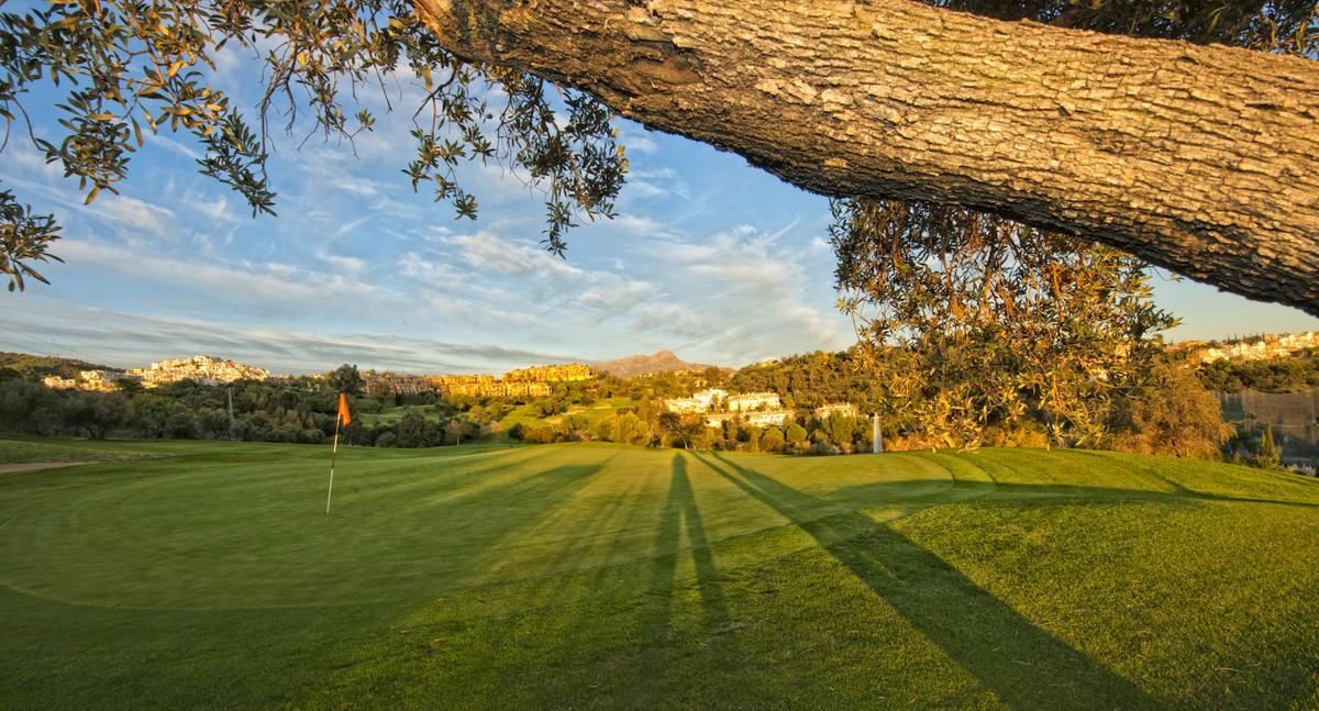 Golf Penthouse with Pool in Los Arqueros, Benahavís